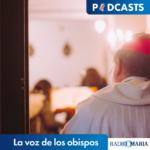 La voz de los obispos